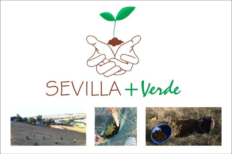 Sevilla-mas-verde-1