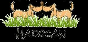 Logo Hadocan