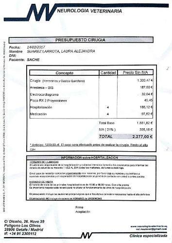 presupuesto-sachi