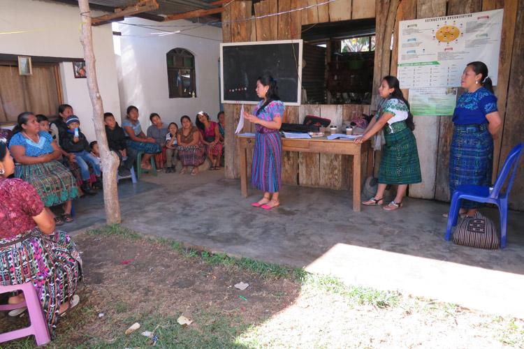 estudios-guatemala-1