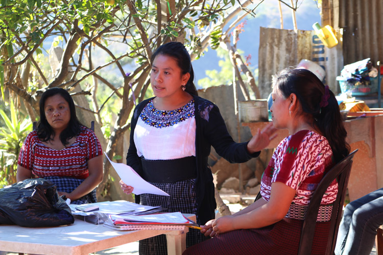 estudios-guatemala-2