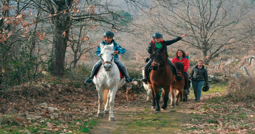 ruta-caballos-3