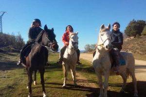 ruta-caballos-cajita