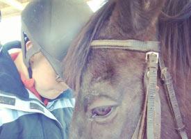 equino-terapia-cajita