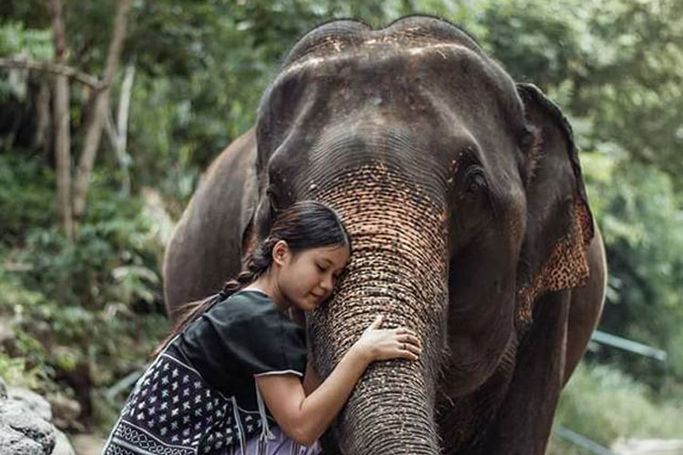 experiencia-tailandia-1