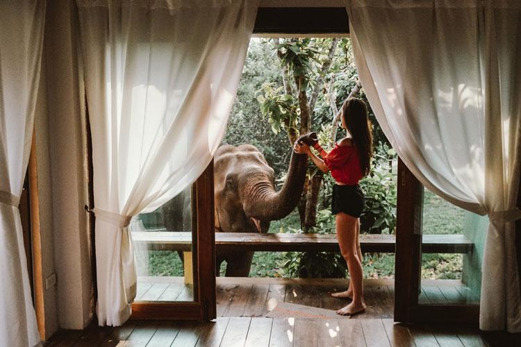 experiencia-tailandia-4