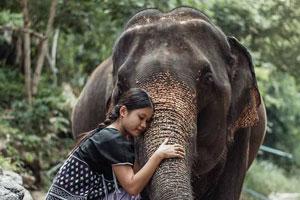 experiencia-tailandia-cajita