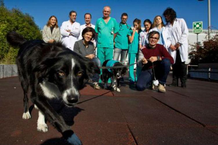 5-Biodogtor-y-el-equipo-medico