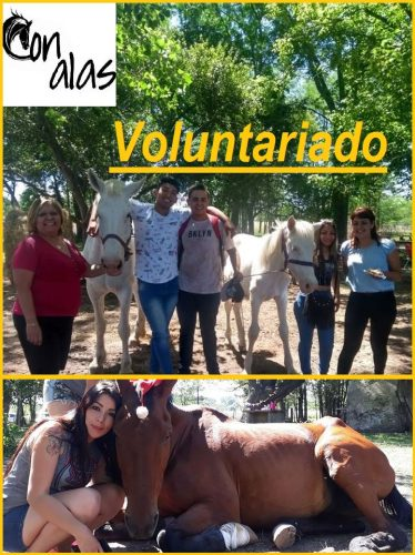VOLUNTARIOS-e1548162121851