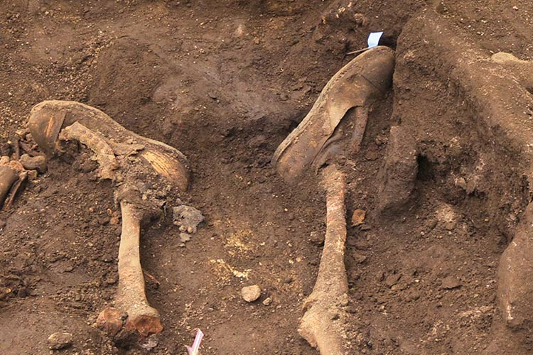 exhumaciones-galicia-2